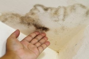 How to Detect a Plumbing or Slab Leak in Central Florida